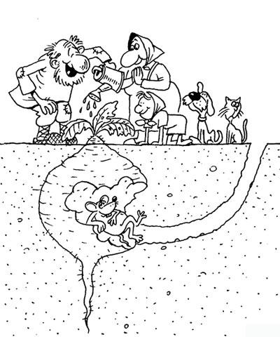 Малюнок  про ріпку