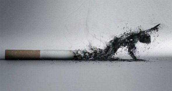 Фото прикол  про паління чорний