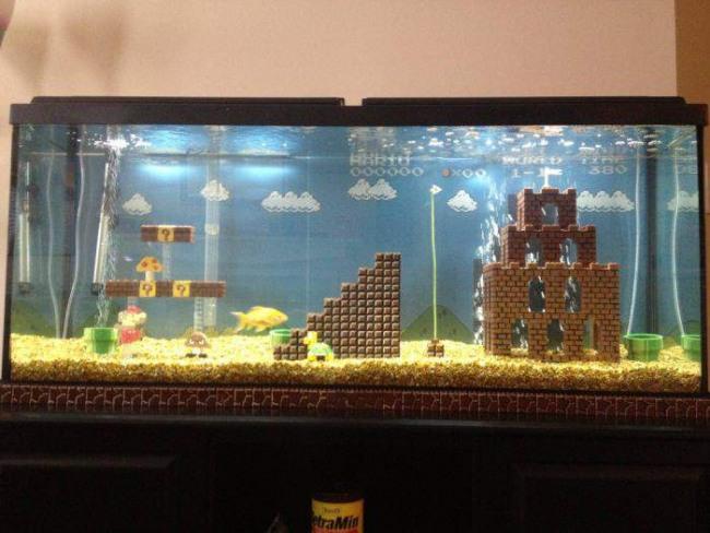 Фото прикол  про акваріум