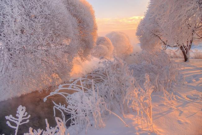 Фото прикол  про іній та зиму