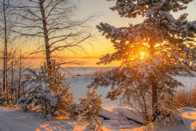 Фото прикол  про захід сонця та зиму