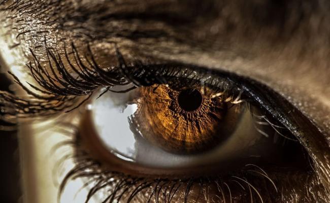 Фото прикол  про очі