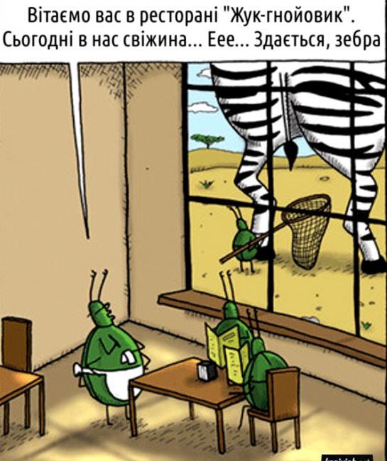 Малюнок  про жука, кал та ресторан