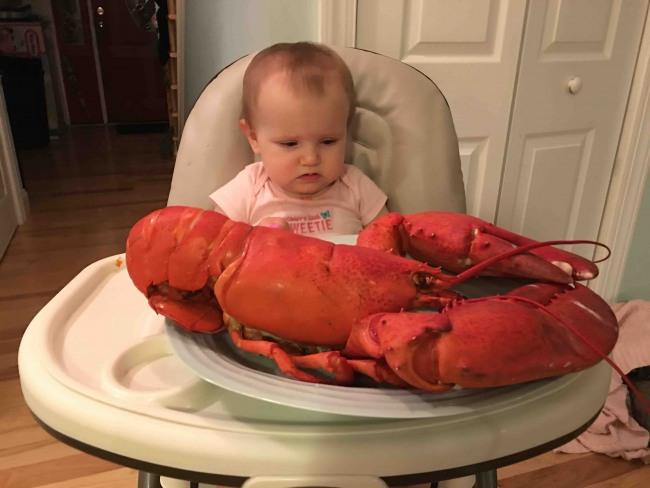 Фото прикол  про омарів та дітей