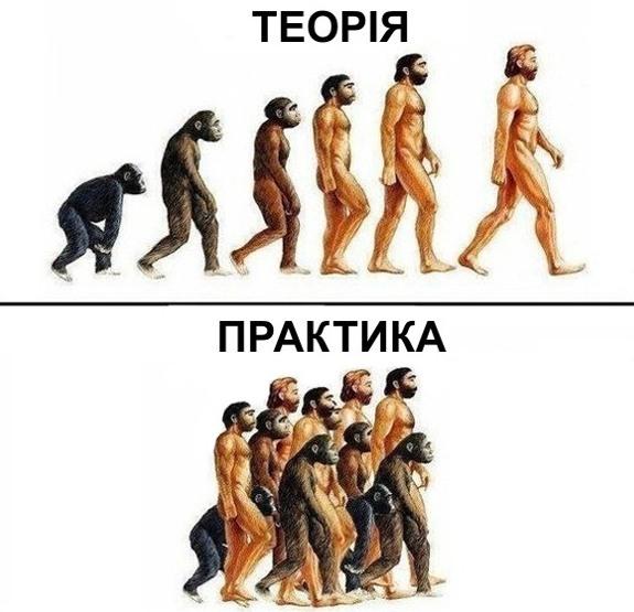 Малюнок  про людей та еволюцію