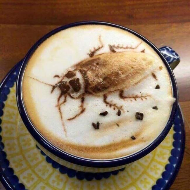 Фото прикол  про каву та тарганів