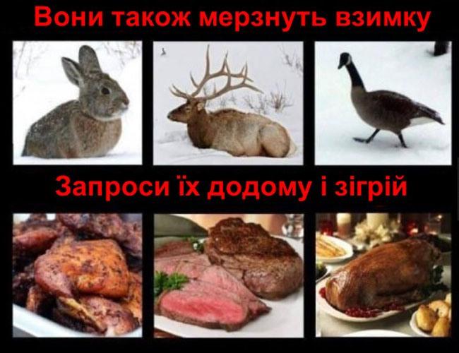Фото прикол  про тварин, їжу жорстокий