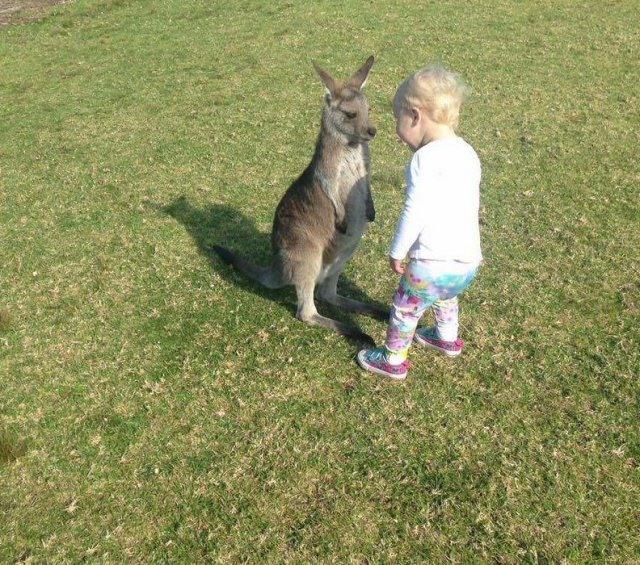 Фото прикол  про кенгуру та дітей