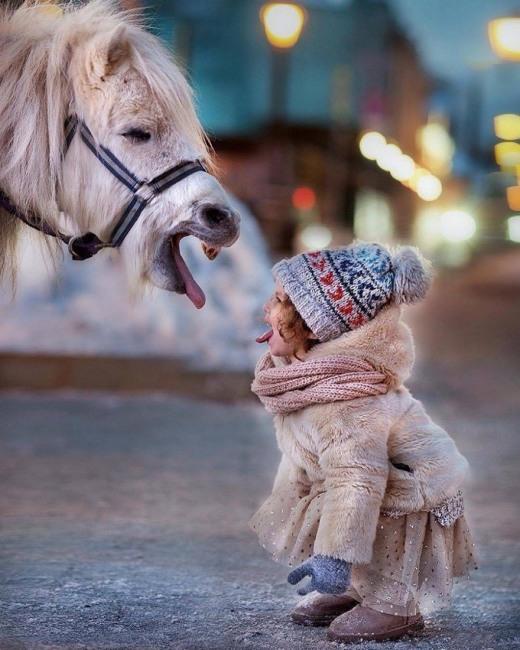 Фото прикол  про коней та дітей