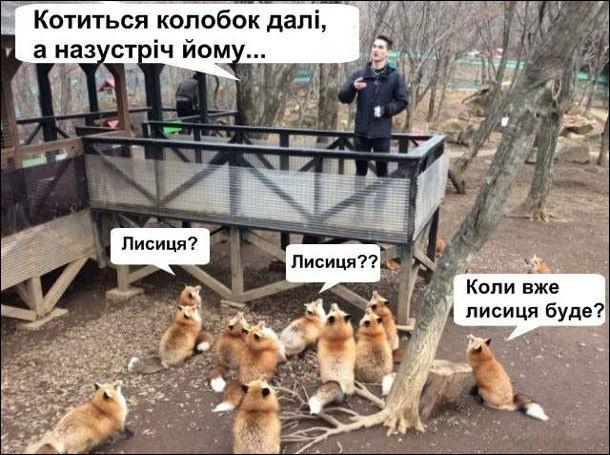 Фото прикол  про лисицю та казку