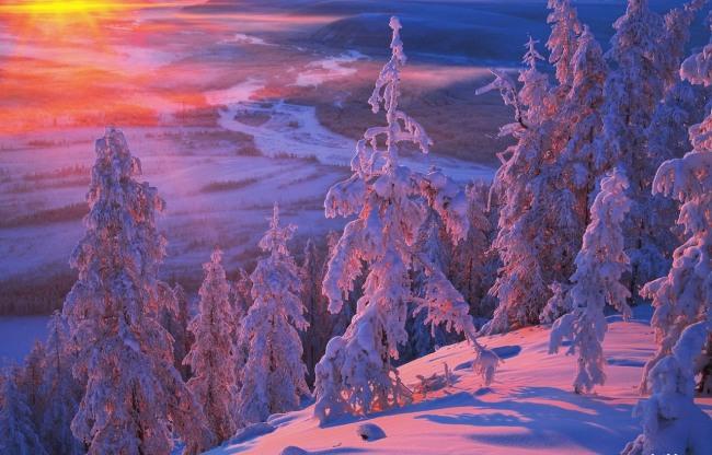 Фото прикол  про зиму
