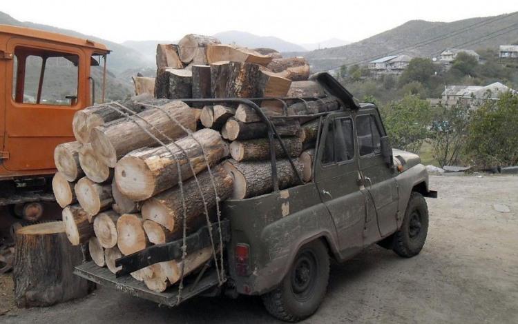 Фото прикол  про дрова