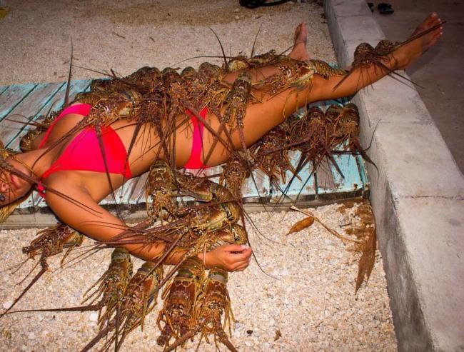 Фото прикол  про омарів, дівчат чорний