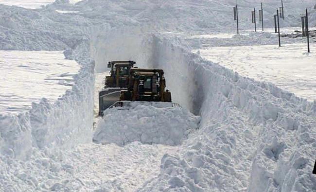 Фото прикол  про сніг