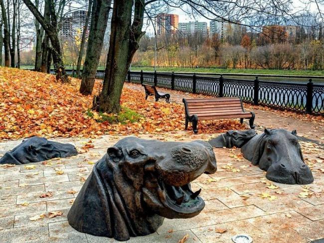 Фото прикол  про пам'ятник та бегемота