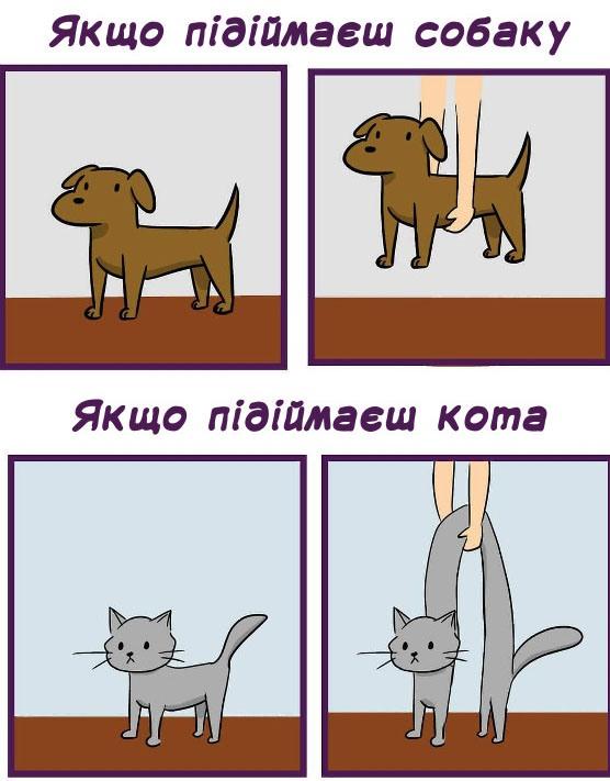 Малюнок  про собак та котів