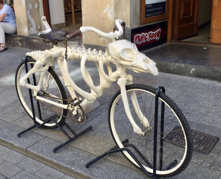 Фото прикол  про велосипед та скелет