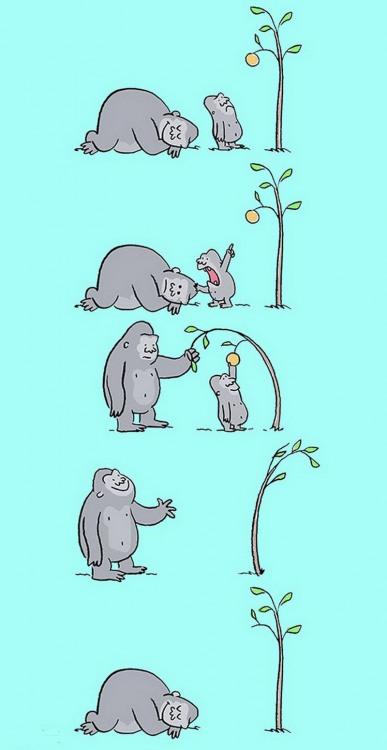 Малюнок  про мавп