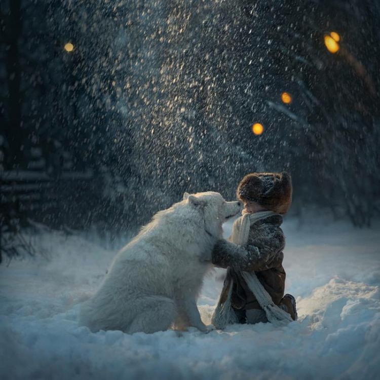 Фото прикол  про собак та дітей