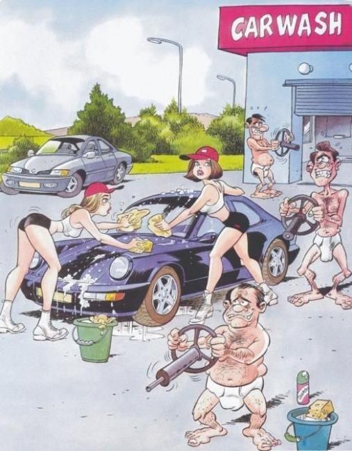 Малюнок  про автомийку вульгарний