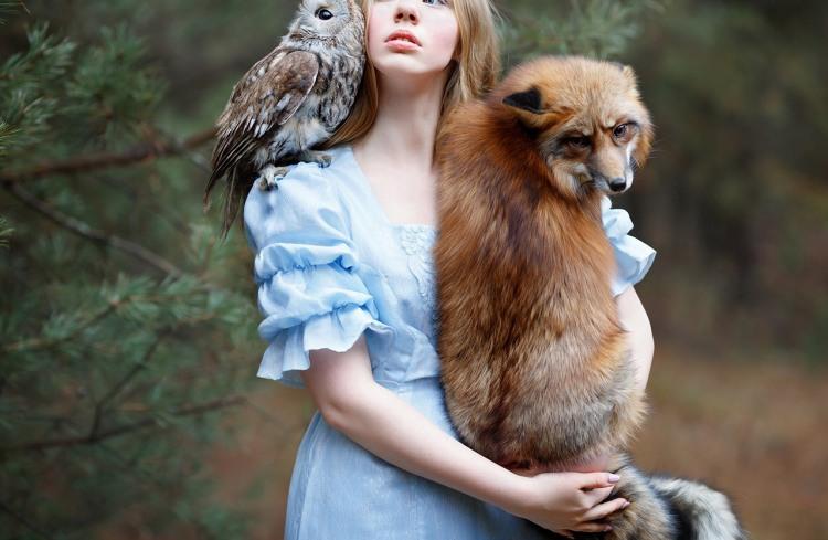 Фото прикол  про лисицю, сову та дівчат