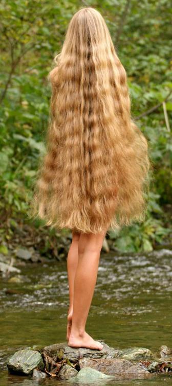 Фото прикол  про білявок та волосся