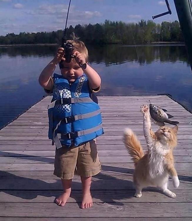 Фото прикол  про дітей, риболовлю та котів