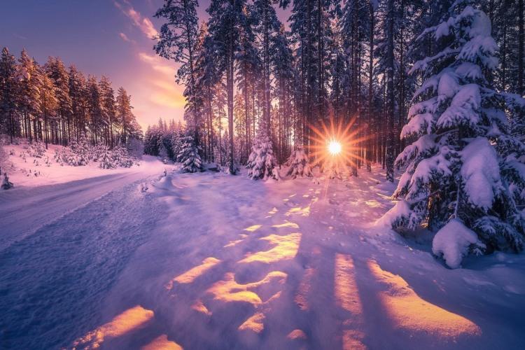 Фото прикол  про зиму та захід сонця