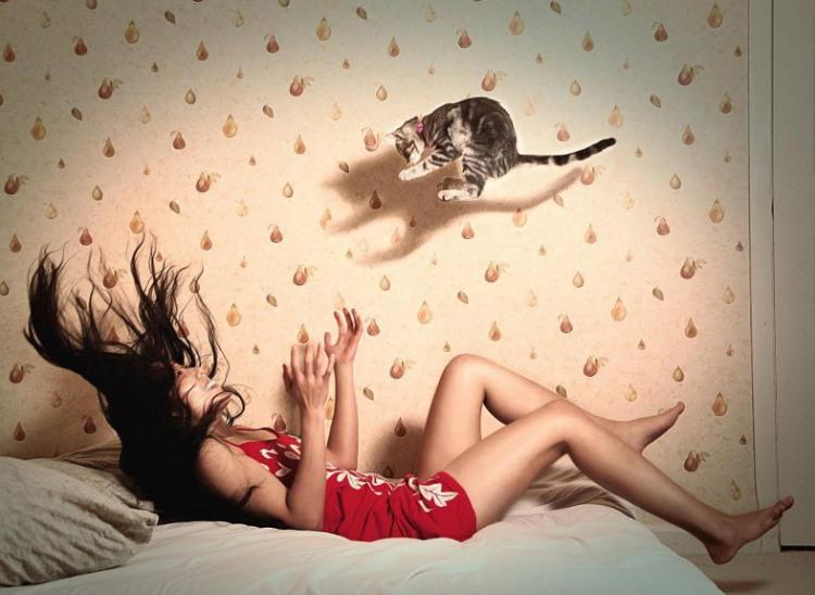 Фото прикол  про дівчат, кошенят та стрибки