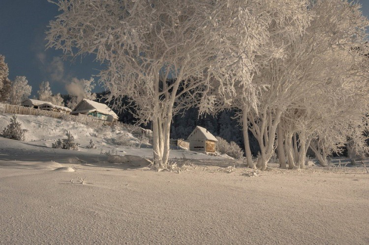Фото прикол  про зиму та іній