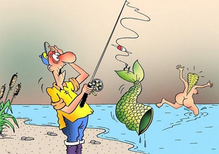 Малюнок  про русалок, рибалок вульгарний