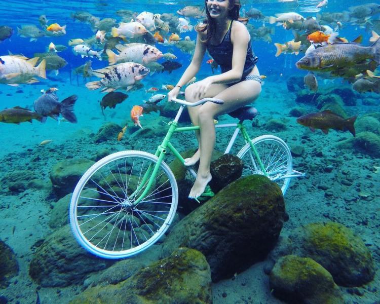Фото прикол  про велосипедистів