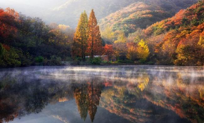 Фото прикол  про осінь та природу