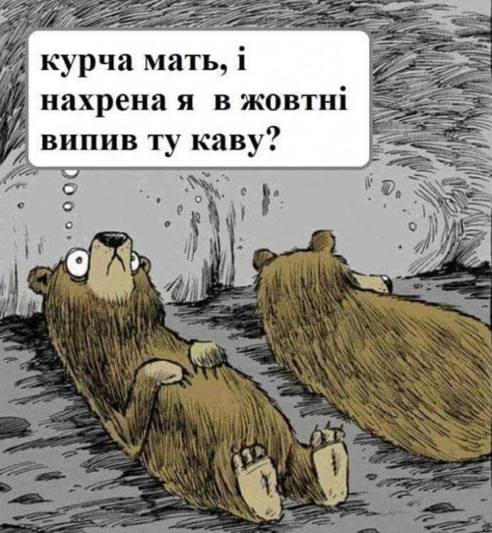Малюнок  про ведмедів, каву з матюками