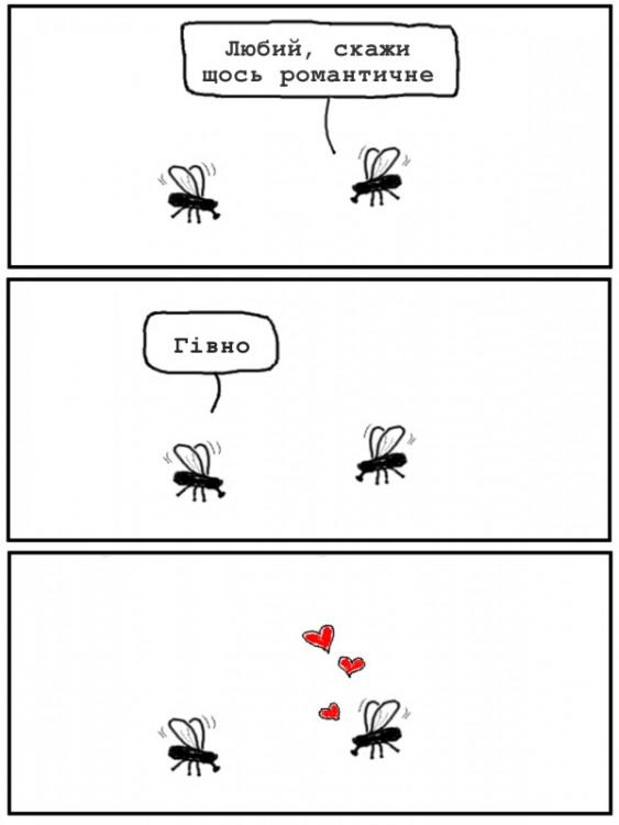 Малюнок  про мух, романтику та кал