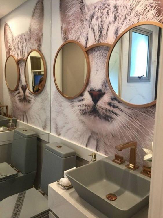 Фото прикол  про туалет, дзеркало та котів