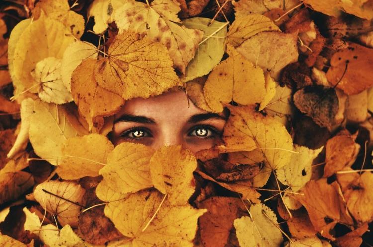 Фото прикол  про листя