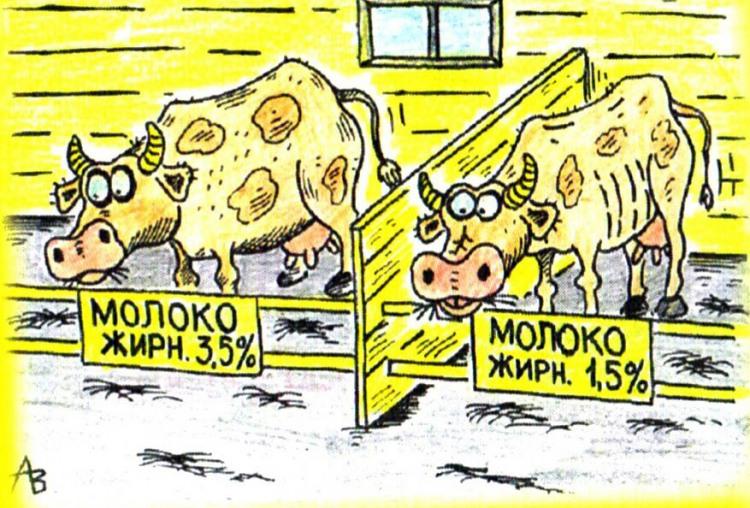 Малюнок  про корову, молоко журнал перець