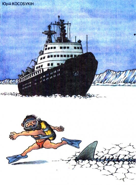 Малюнок  про акул, північ журнал перець