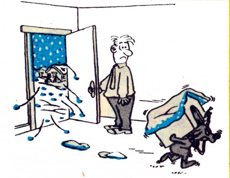 Малюнок  про собак, будку, холод журнал перець