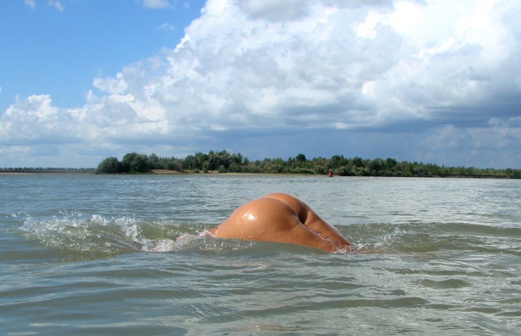 Фото прикол  про плавців, сідниці вульгарний