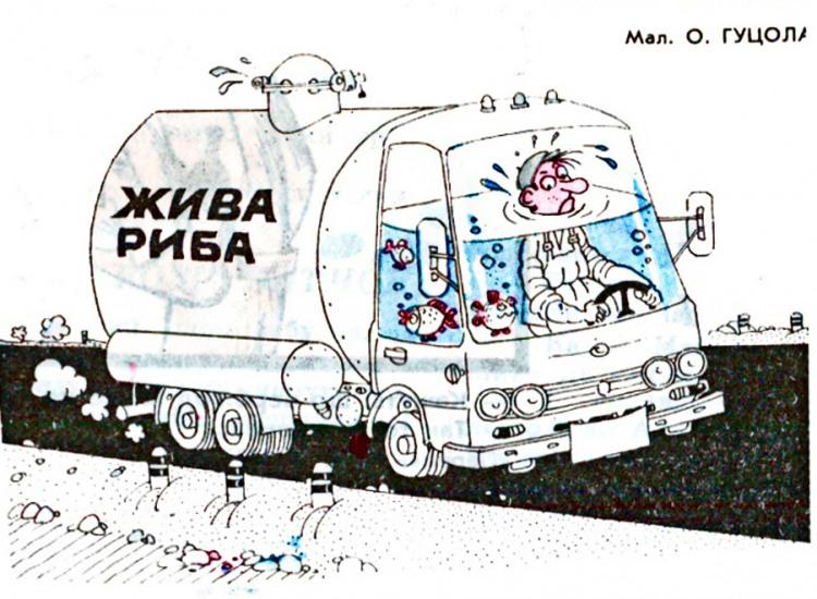 Малюнок  про автомобілі, рибу журнал перець
