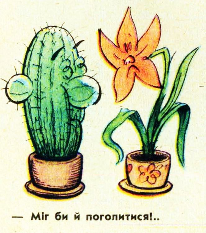 Малюнок  про кактус, квіти журнал перець