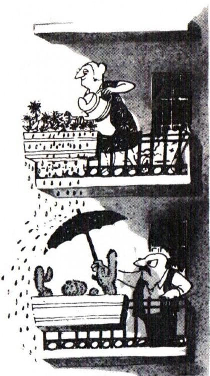 Малюнок  про квіти, кактус, балкон журнал перець