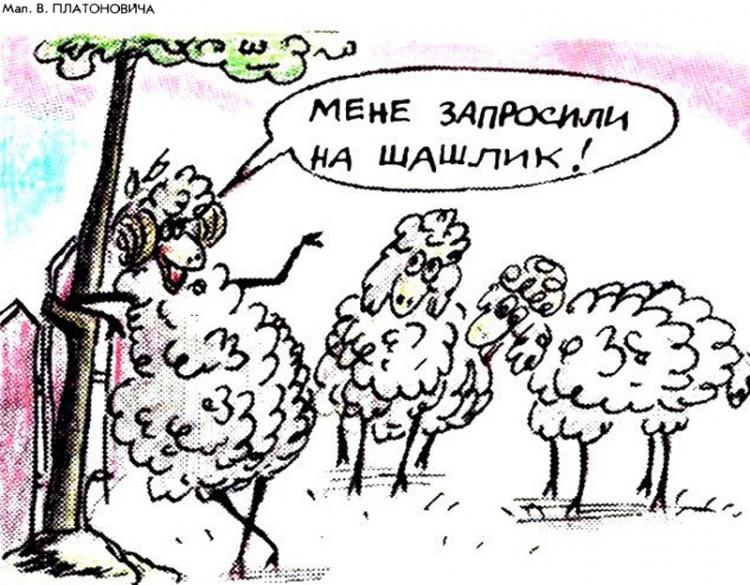 Малюнок  про овець, шашлик журнал перець