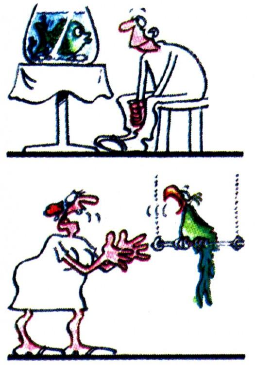 Малюнок  про чоловіків, жінок, рибу, папуг журнал перець