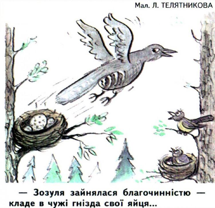 Малюнок  про зозулю журнал перець