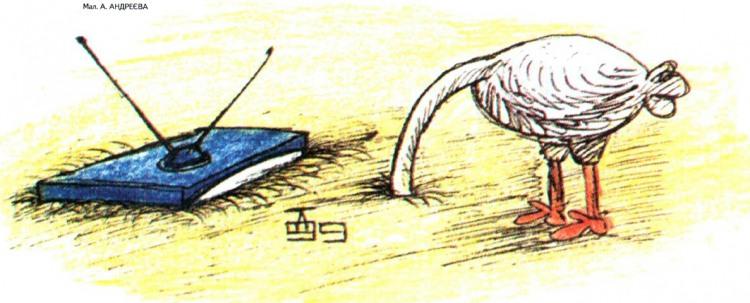 Малюнок  про страусів, телевізор журнал перець