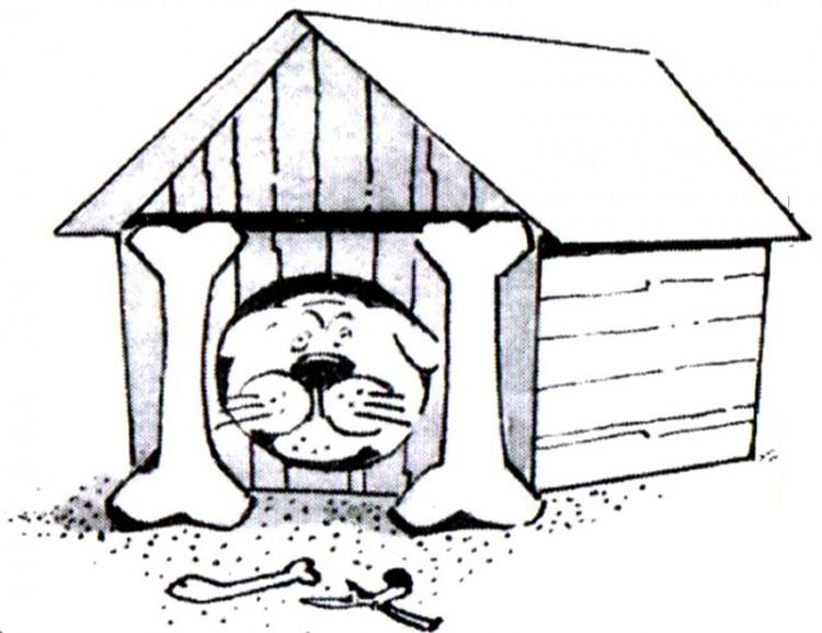 Малюнок  про собак, будку, кістки журнал перець