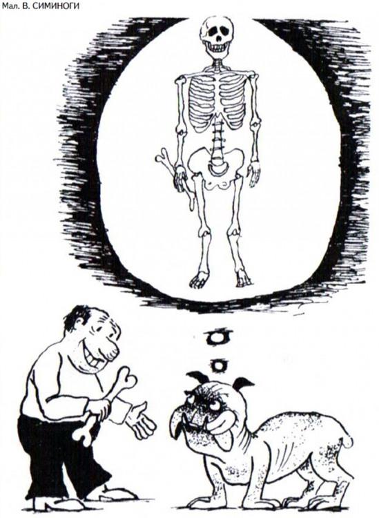Малюнок  про собак, кістки, скелет, чорний журнал перець